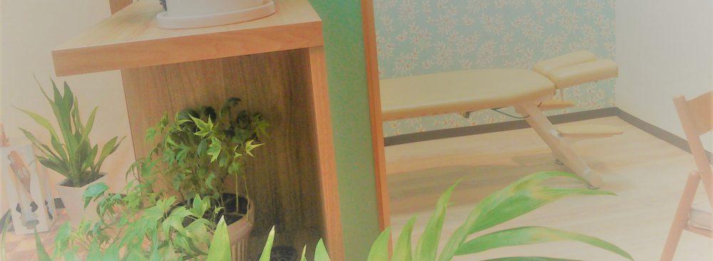 船橋 北習志野 女性の為のミモザ整体院の日記